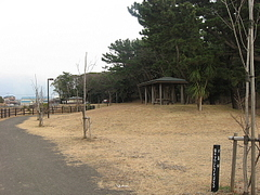 Bota011814_2